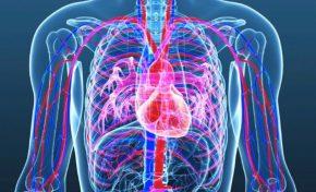Τύποι καρδιακών παθήσεων: Συμπτώματα